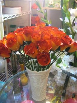 600 Half Blooming Orange Wooden Roses (2 Color Options)